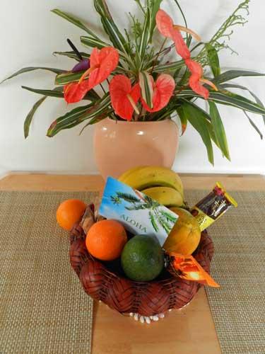Ferienwohnungen in Hawaii